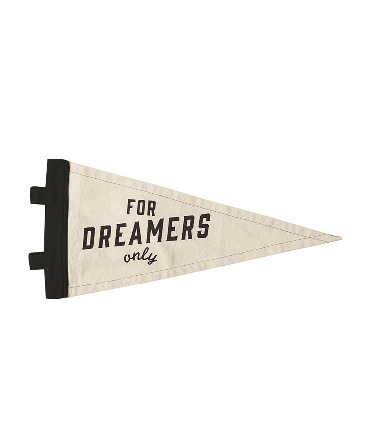 Dreamers only Flag